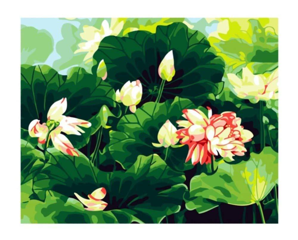 Diy Malen Nach Zahlen Diy Geschenk Wand Dekor Lotus Blume