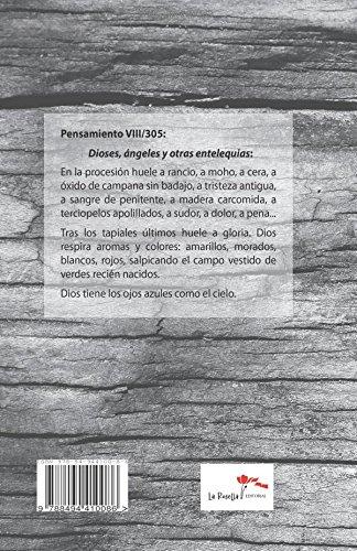 Palabras, PalabrerIos y Palabramares (Spanish Edition): Fernando Garrido Redondo: 9788494410086: Amazon.com: Books