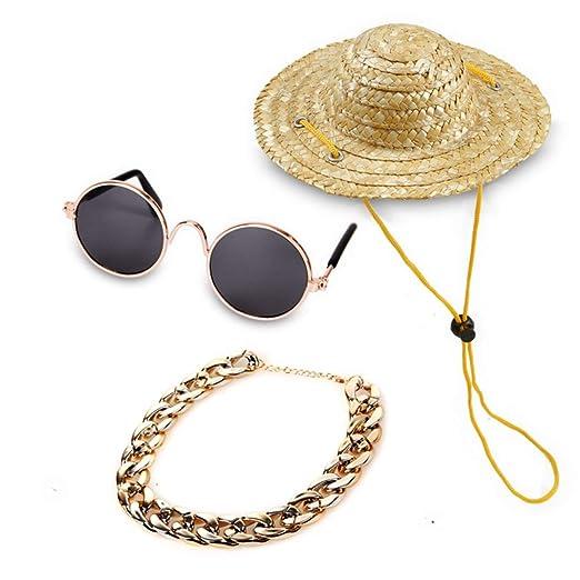 SHIZHESHOP Gafas de Sol para Mascotas, Sombreros para Mascotas ...