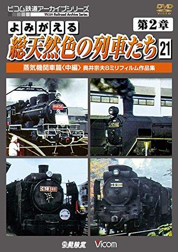 Railroad - Archive Series Yomigaeru Sou Tennenshoku No Ressha Tachi Vol.21 [Japan DVD] DR-4181 (Railroad Sou)