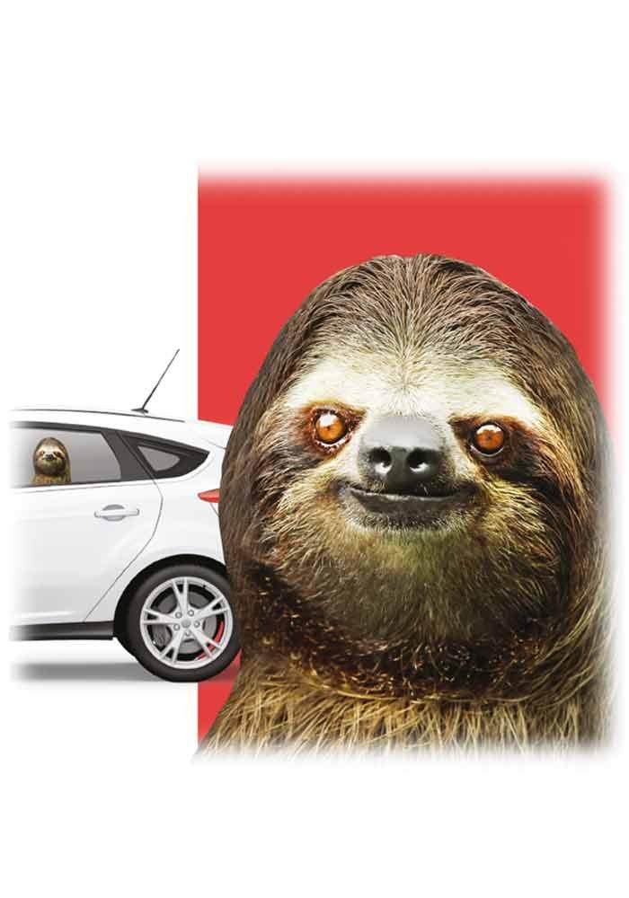 Mr.Giggelz Fenstersticker f/ür Dein Auto Faultier