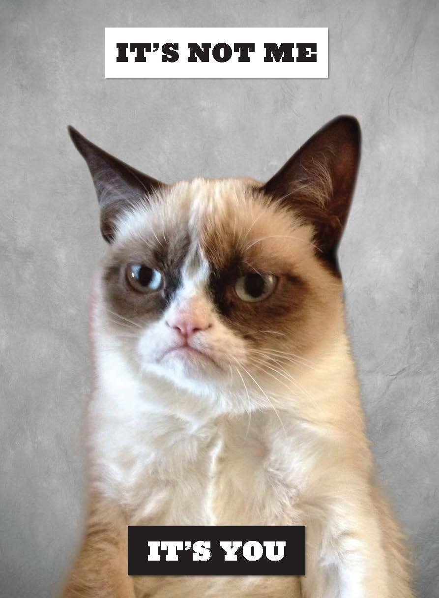 Image of: Tartar Sauce Amazoncom Grumpy Cat Grumpy Book Grumpy Cat 9781452126579 Amazoncom Books