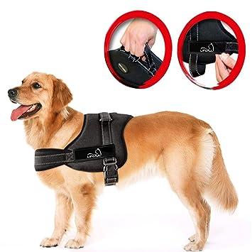 61qYHKyHyLL._SY355_ amazon com lifepul(tm) no pull dog vest harness dog body dog harness at eliteediting.co