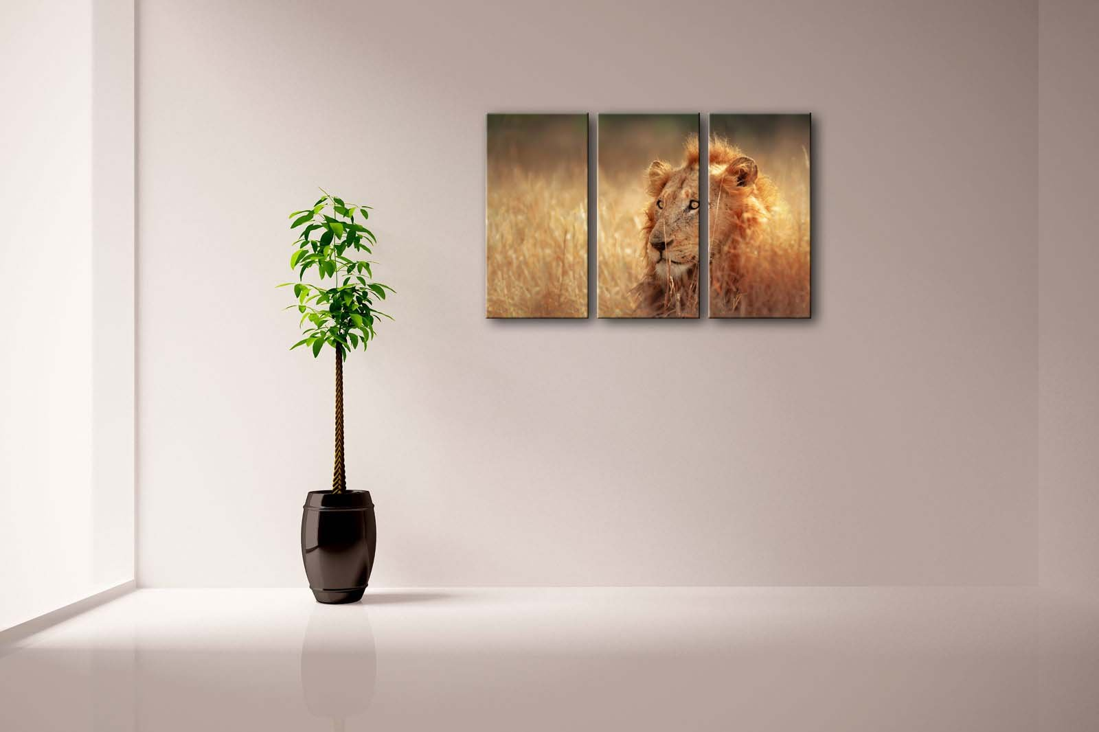First Wall Art - 3 Panel Wall Art Big Male Lion Lying In Dense Grassland Kruger National Park South Africa Painting Pictures Print On Canvas Animal The Picture For Home Modern Decoration piece (Stretched By Wooden Frame,Ready To Hang)