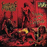 Haven For The Insane by Cardiac Arrest (2010-06-08)