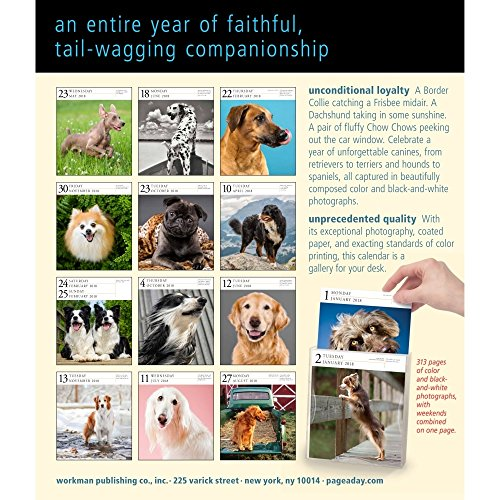 Dog 2018 Page-A-Day Gallery Calendar Photo #4