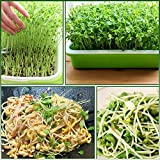 Seed Sprouter Tray, 5 Pack Seed Germination, BPA