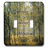 3dRose lsp_237481_2 Image of Serenity Prayer in Deep Woods Photo Toggle Switch, Mixed