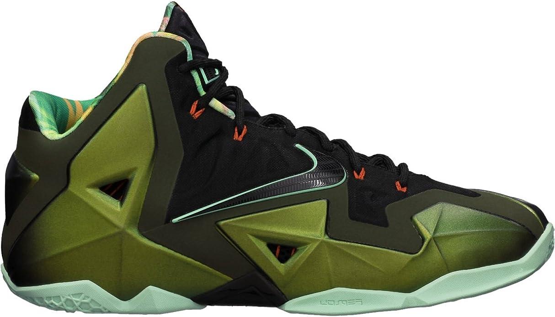 Nike Lebron XI King's Pride