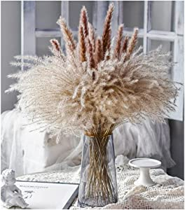 WKHS 40pcs Dried Pampas_Grass, Natural Dried Flowers for Boho Home Decoration, Fluffy Stems Reed Faux Pampas_Grass Branches for Wedding Bouquet Arrangements and Floor Vase Wreath Decor