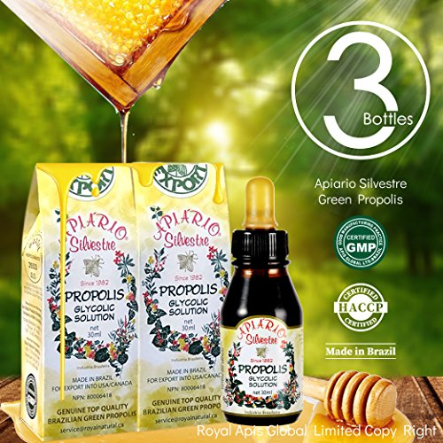 Official Distributor - 3 Bottles of Apiario Silvestre Brazilian Green Bee Propolis Liquid-Alcohol Free, Wax Free, Sugar Free by APIARIO SILVESTRE