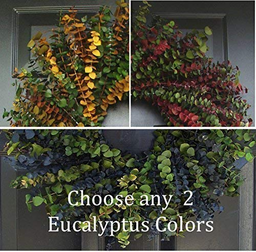 Elegant Holidays Handmade Eucalyptus Wreath, Choice of 2 Colors, Welcome Guests with Decorative Front Door- for Outdoor or Indoor Home Wall Accent Décor All Seasons and Holidays 16-24 inches available