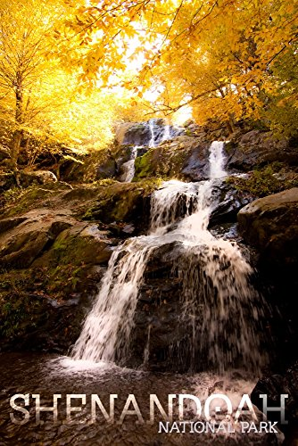 Shenandoah National Park, Virginia - Waterfall in Autumn - Block Text (16x24 SIGNED Print Master Giclee Print w/Certificate of Authenticity - Wall Decor Travel Poster)
