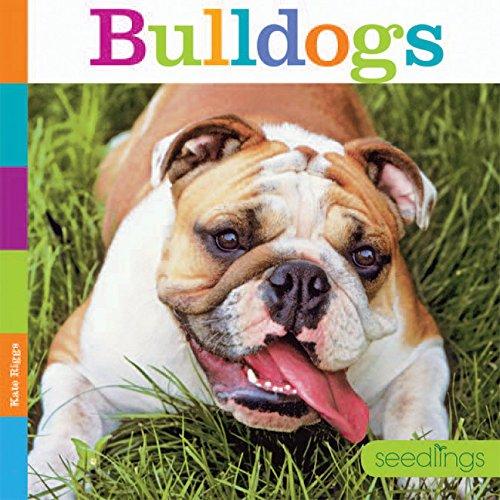 True Bulldog - 7