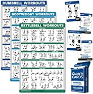 Palace Learning 4 Pack: Dumbbell + Bodyweight + Kettlebell Workouts Poster Set + Dumbbell Exercise Playing Car