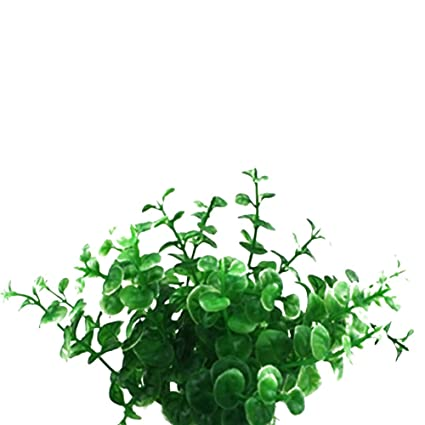 Wa Acuario Planta Plástico Plástico Planta Planta Agua Artificial Plantas para Pecera Tanque Acuario