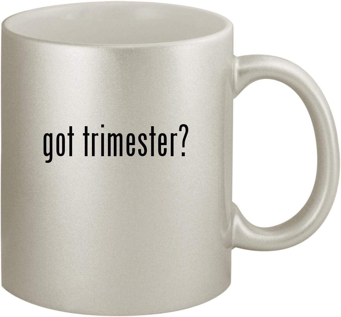 got trimester? - Ceramic 11oz Silver Coffee Mug, Silver