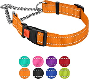 CollarDirect Reflective Dog Collar Martingale Collars Side Release Buckle Chain Training Adjustable Pet Choke Collars