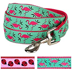 "Blueberry Pet Durable Pink Flamingo on Light Emerald Dog Leash 5 ft x 5/8"", Small, Basic Nylon Leashes for Dogs"