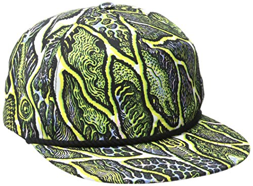 Volcom Men's Tetsunori Print Hat, Multi, One Size