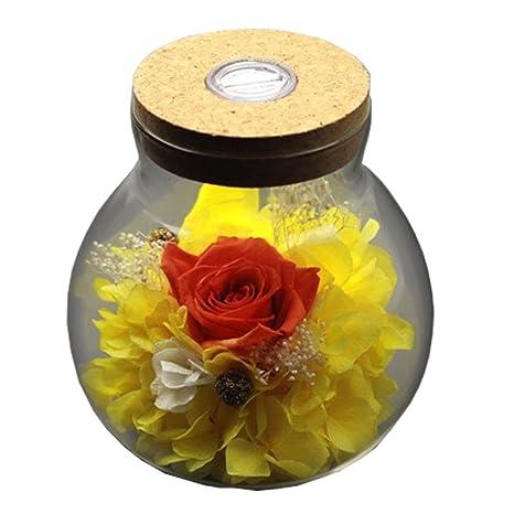 [nueva versión 2018] Havenfly mano preservada flores decoración rosa con vidrio en forma de
