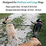 iYoShop Dual Dog Leash, Double Dog Leash, 360