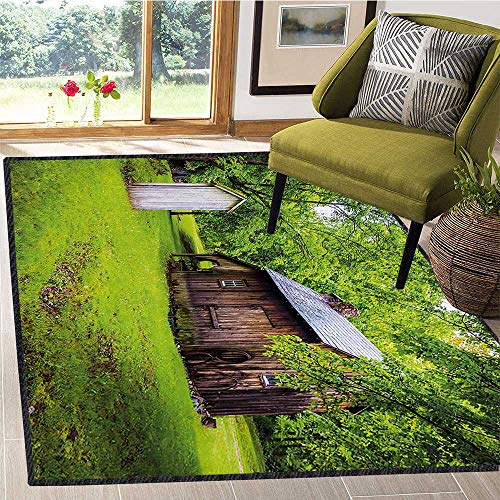 (Outhouse, Anti Static Area Rugs, Spring Time Forest Leaves with Outhouse Little Cottage Art Photo, Door Mats for Inside 4x5 Ft Fern Green and Dark Brown)
