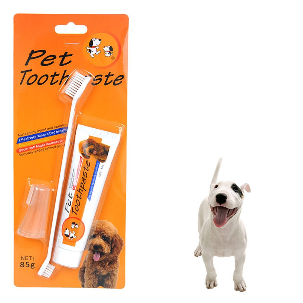 Pethouzz Dog Toothpaste 3-oz with Toothbrush, Soft Pet Toothbrush For The Dental Care of Your Dog by PETHOUZZ (Image #5)