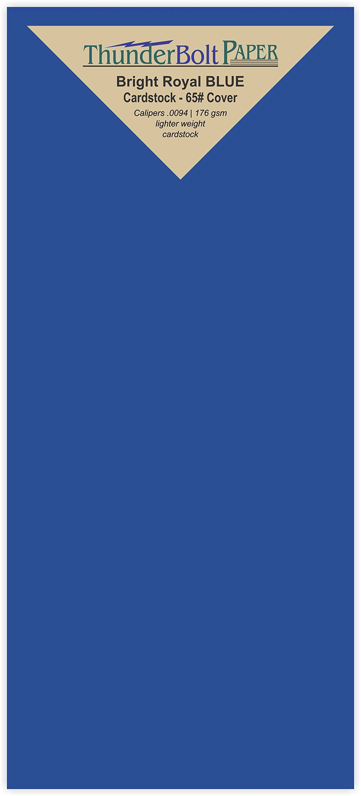 150 Bright Royal Blue 65# Cardstock Paper 4 X 9 Inches #10 Envelope Insert Size - 65# Cover Light Weight Bright Card Stock - Printable Smooth Surface for Invitations