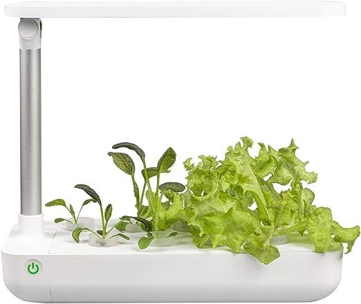 VegeBox Mesa Smart Jardín Interior | Sistema de cultivo hidropónico – 9 orificios de plantación + Sistema de iluminación inteligente con temporizador | Kit de cultivo hidropónico para hierbas, verduras, flores: Amazon.es: Jardín