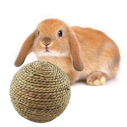Para Pelota Juguete Pequeñas Mascotas Masticar Limpieza De X8wPnO0Nk