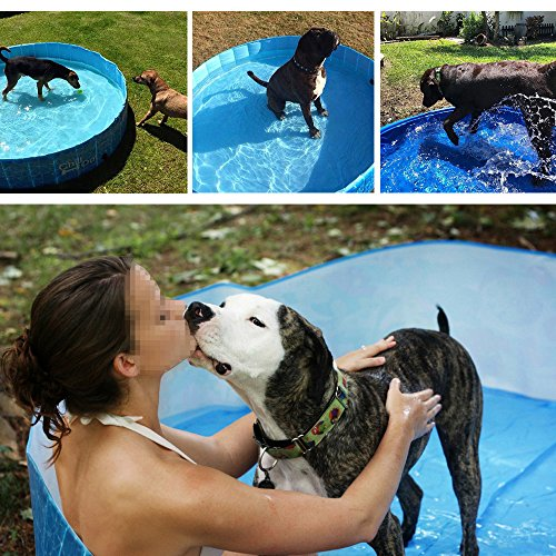 ALL FOR PAWS Outdoor Bathing Dog Pool Portable Pet Bath Tub Blue by ALL FOR PAWS (Image #5)