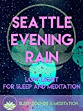 Seattle Evening Rain Low Light For Sleep And Meditation