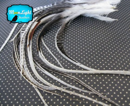 Moonlight Feather, Hair Extension Feathers - Unique Cream Thick Long Grizzly Rooster Hair Extension Feathers - 7-11 Inches Long - 6 Pieces Per Pack