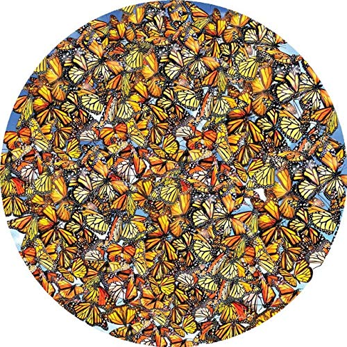 Sunsout 2019 Monarch Frenzy by Artist Lori Schory 1000 Piece Butterflies and Insects Jigsaw Puzzle ()