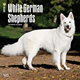 White German Shepherds Dogs Wall Calendar 2018 {jg} Best Holiday Gift Ideas - Great for mom, dad, sister, brother, grandparents, grandchildren, grandma, gay, lgbtq.