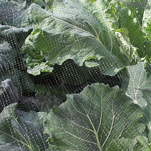Butterfly Protection Netting Insect Garden Netting 2 x 5m - More sizes available Gardening Naturally