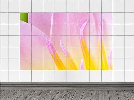 Piastrelle adesivo piastrelle immagine primo piano di rosa x