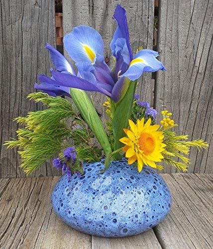 (Posey Pot Flower Vase (Blue))