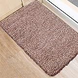 BEAU JARDIN Indoor Doormat Absorbent Mats 36'x24' Latex Backing Non Slip Door Mat for Small Front...