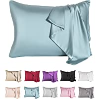 Natural Mulberry Silk Pillowcase for Hair and Skin,Cooling Silk Pillow Case with Hidden Zipper,Allergen Proof Dual Sides…