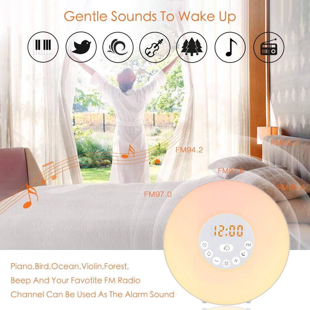 Lichtwecker Zknen/® Wake Up Licht mit FM Radio Digitaluhr Licht 6 Nat/ürlichen Sounds Snooze Funktion 7 Farbige 10 Dimmstufen LED Lichter Touch Control Nachttischlampe f/ür Erwachsene und Kinder