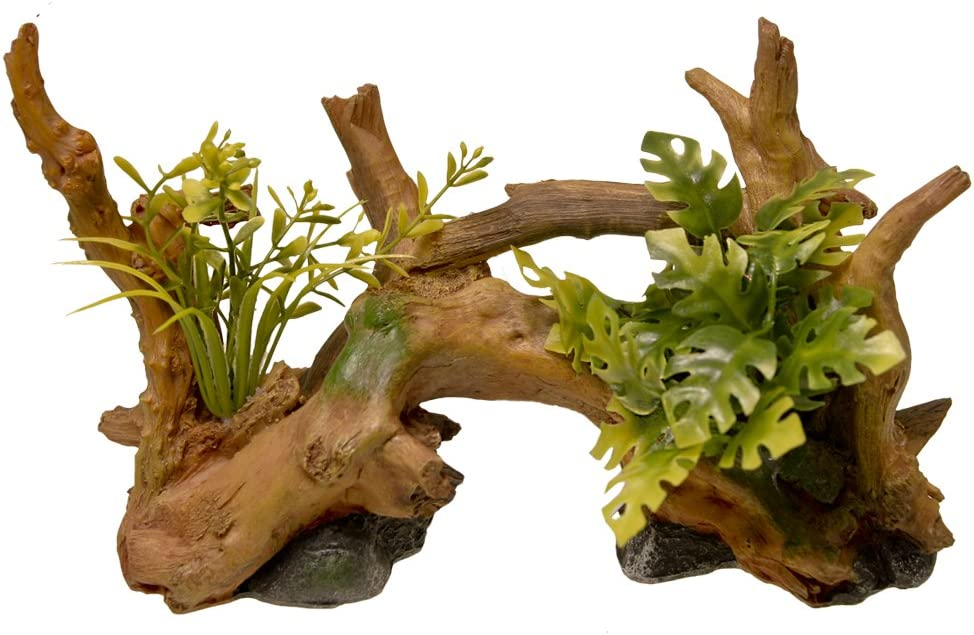 Blue Ribbon Driftwood Centerpiece with Plants