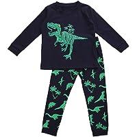 Carolilly Juego de 2 piezas de ropa de niño para niño, camiseta de manga larga con estampado de dinosaurio + pantalones…