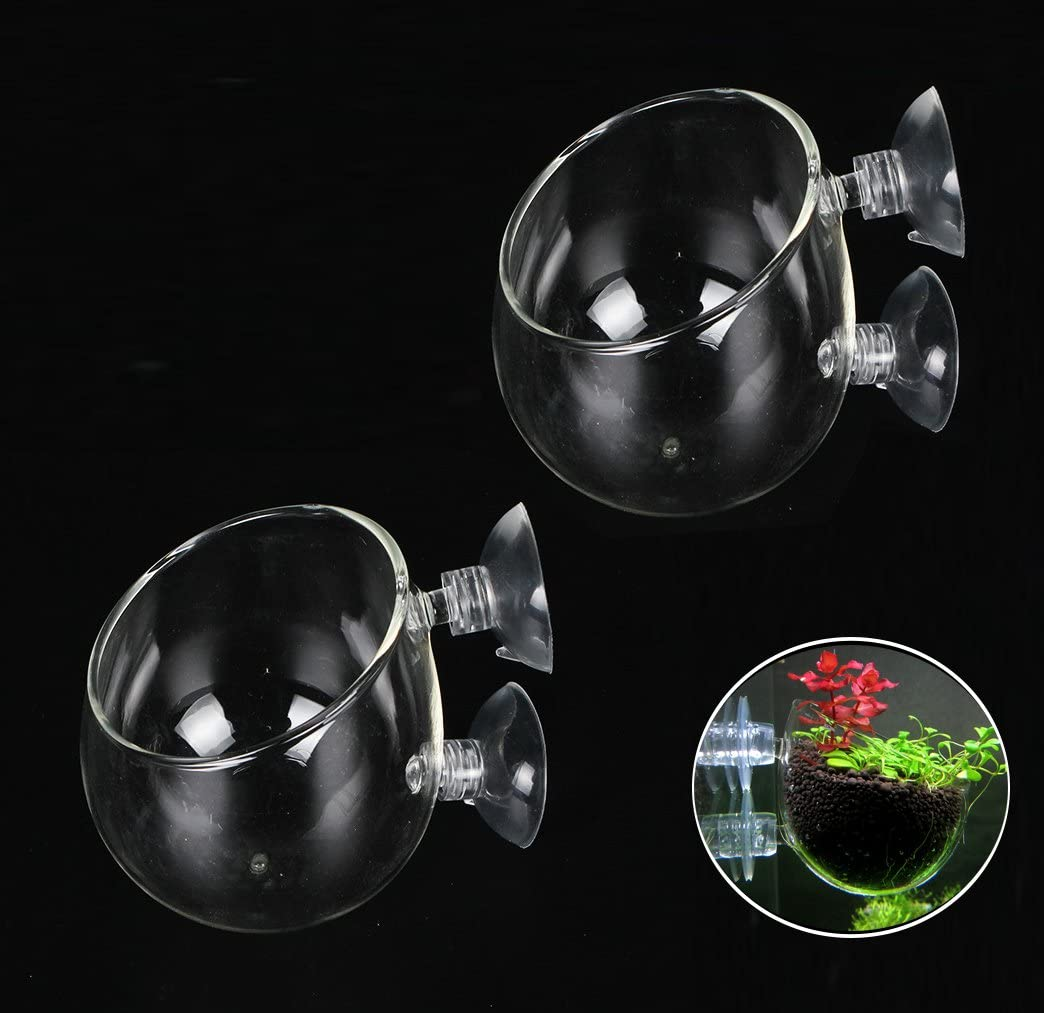 Fashionclubs Crystal Glass Aquatic Plant Cup Pot Holder, Aquarium Tank Live Plant Glass Pot Red Shrimp Holder with 2 Suckers,Fish Tank Aquascape Decor,2-Pack