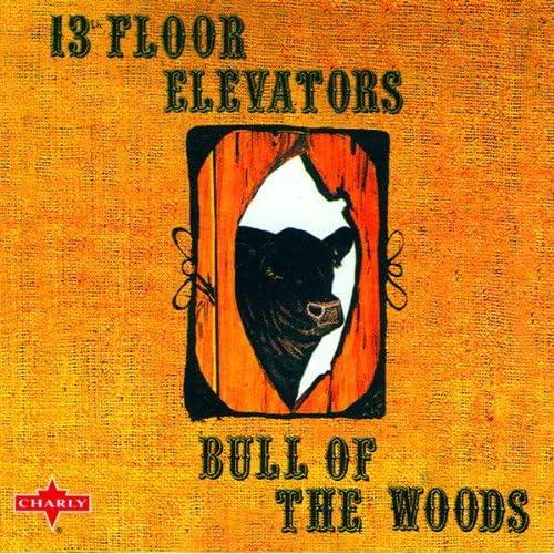 fire in my bones original by the 13th floor elevators on