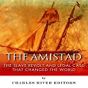 The Amistad: The Slave Revolt and Legal Case that Changed the World Audiobook by  Charles River Editors Narrated by Norman Gilligan