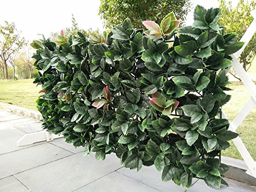Porpora Artificial Hedge Plant, Greenery Panels Suitable for Both Outdoor or Indoor use, Garden, Backyard and/or Home Decorations, European Holly 20 x 20 Inch (12 pack) by e-Joy from Porpora