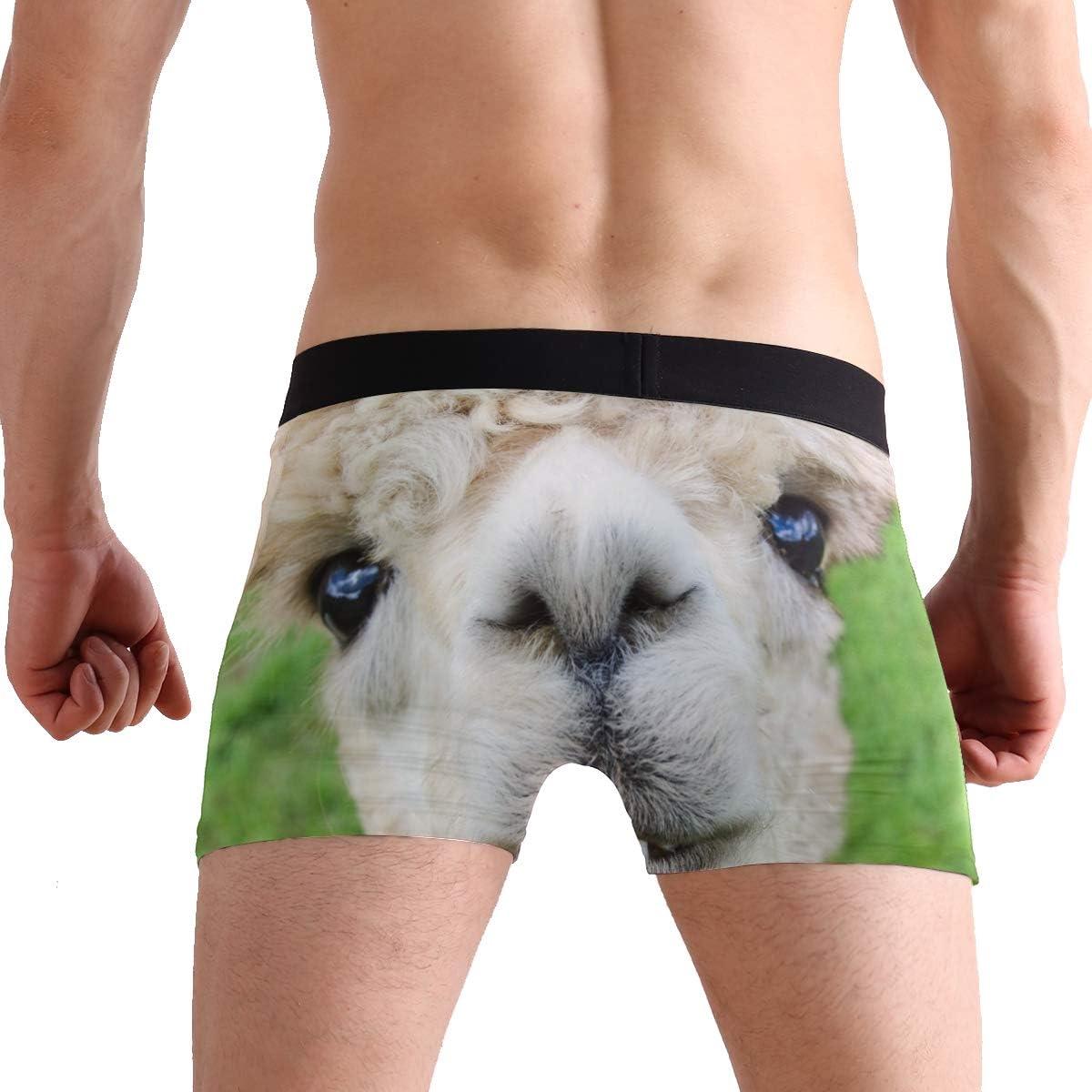 Mens Breathable Boxer Briefs Male Classic Fit Underwear S M L XL