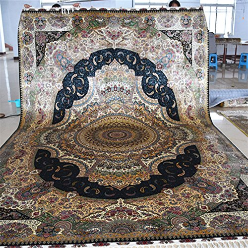 Yuchen 10'x14' Traditional Area Rug Persian Large Size